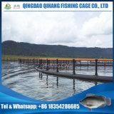 Sich hin- und herbewegender Fisch-Offshorerahmen, Fisch-Rahmen, der für Thunfisch bewirtschaftet