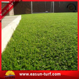 Het vrije Kunstmatige Gras van het Golf van de Bevordering van de Steekproef Mini voor Groen Zetten