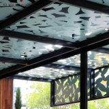 Pantallas exteriores de aluminio del metal del corte del laser del CNC de los paneles de pared