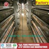 Jaula de batería del pájaro del equipo de cultivo para el pollo de la capa