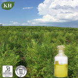 Olie van de Boom van de Thee van 100% de Natuurlijke Zuivere/Olie Melaleuca