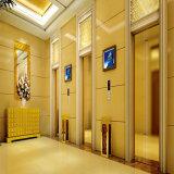 13 Personen-Luxuxpassagier-Höhenruder-Aufzug mit goldenem Edelstahl-Ende