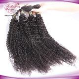 Les cheveux de haute qualité à bas prix Virgin Bundles Remi indi sèche