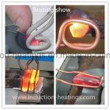 Het Verwarmen van de Inductie van de hoge Frequentie de Solderende Machine van de Diamant
