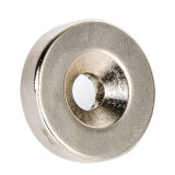 In het groot Magneten NdFeB voor Industrieel