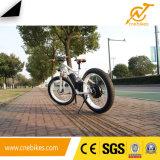 48V 1000W 전기 산악 자전거 뚱뚱한 타이어 전기 자전거