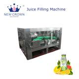 prix d'usine monobloc 3 en 1 bouteille de verre de jus de machine de remplissage à chaud