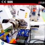 능동태 CO 자전 (평행한) 쌍둥이 나사 알갱이로 만드는 기계
