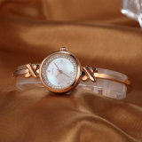 Montre de mode de luxe de femme de cadeau de montre (Wy-022E)