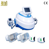 Gros corps de machine de Zeltiq Coolsculpting du best-seller formant la congélation de Cryolipolysis de machine de gel