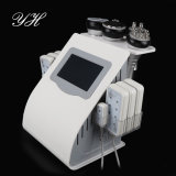 Instrument mince de liposuccion de machine de Velashape de cavitation de beauté professionnelle d'ultrason
