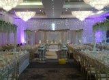 結婚式の装飾のための白い背景幕の白色光LEDの星Curatin