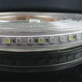 Twee van het LEIDENE 84LEDs RGBW van de Garantie 50m/Roll Jaar Licht van de Strook