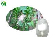 Qualität Huperzia Serrata Auszug-Puder 98% Huperzine a