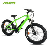 250W 1000W Fat pneu vélo électrique pour adulte