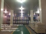 Sala fria e congelador para peixe, carne, alimentos, frutas e produtos hortícolas