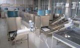 A linha de produção totalmente automático para os doces suaves e doces pegajosos