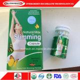 Slim Fit la pérdida de peso Natural producto Max adelgaza la cápsula verde