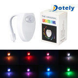 Karosserie, die automatisches LED-Bewegungs-Fühler-Nachtlampen-Toiletten-Licht erfasst