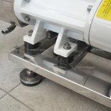 Gesundheitliche Schrauben-Pumpen-Buttersahne-Anlieferung, doppelte gewundene Pumpe