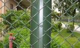 직류 전기를 통한 정연한 금속 와이어 2-60 메시 다이아몬드 구멍 (AYW-008)