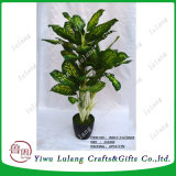 Árbol de follaje artificial artificial Dieffenbachia 155cm, Evergreen Bonsai