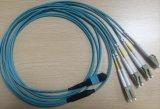 12f 48f 3.0mm MPO MTP Steckschnür Weibchenmm-Om3