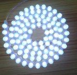 Striscia impermeabile del silicone LED del TUFFO di DC12V 96LEDs/M