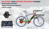 36V250W 20inches Gebirgselektrisches Fahrrad mit Cer