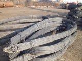 Tondo per cemento armato d'acciaio deforme ad alta resistenza laminato a caldo in bobina