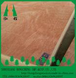 La chapa de Bintangor hizo frente a la madera contrachapada de Bintangor del grado de la madera contrachapada/de los muebles