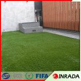 كلب محبوب اصطناعيّة عشب اللون الأخضر مرج عشب اصطناعيّة
