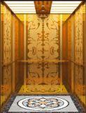 유압 별장 엘리베이터 유압 가정 별장 엘리베이터 또는 상승 (RLS-229)
