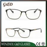 고품질 금속 Eyewear 안경알 광학 프레임 50-322
