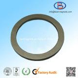 De Sterke Magneet van uitstekende kwaliteit van de Ring NdFeB