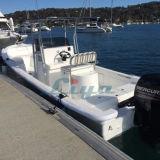 Barco 2017 de pesca de la fibra de vidrio de Liya con el motor para la venta