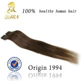 Hair Extension에 있는 최신 Sale Beautiful Synthetic Clip