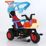 Karikatur-Kind-Dreirad der Qualitäts-Plastik-pp.