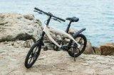 2017hot vendre de nouveaux Electeic vélo