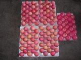Neues Getreide frischer FUJI Apple (150-198)