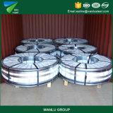 Melhor qualidade de fábrica produzir preto Ms Q195-Q235 bobina de aço Guilhotinagem Tira de aço laminado a quente na bobina