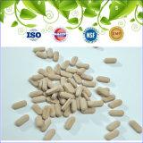 GMP zugelassene Komplex-Tablette des Biokost-Vitamin-B