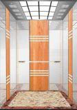 Pequeño elevador del pasajero para usar con buen precio