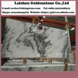 Prijs van de Plak van de fabriek de Klassieke Bewolkte Grijze Marmeren