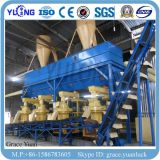 Yulong verticale Anello-Muore la riga di legno dei prodotti della pallina della segatura 4-6t/H