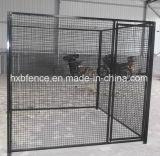 Fossa di scolo del cane della gabbia galvanizzata tubo rotondo della rete metallica