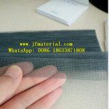 Schermo nero dell'insetto del pieghettato di colore con l'estensione Certificatin