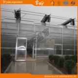 Type serre chaude de Venlo de Multi-Envergure de fournisseur de la Chine en verre
