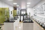 衛生製品の簡単な緩和されたガラスのシャワー室(G21)