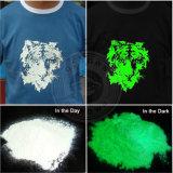 Colorant lumineux de phosphore de poudre photoluminescente de couleur verte pour l'impression de peinture de DIY, lueur dans la poudre foncée